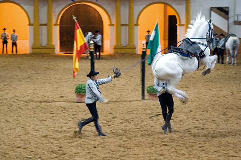 Til dans med de andalusiske heste - Hanne Olsen