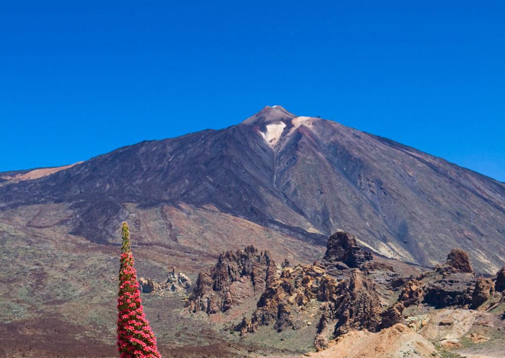 Oplev Tenerifes mangfoldige kulturperler - Check-in Billund